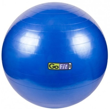 Go Fit Exercise Ball